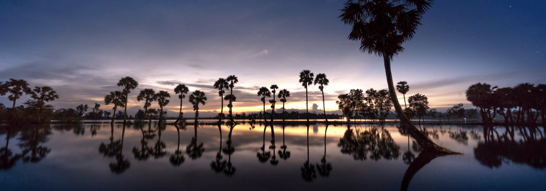 Moving to Florida? Here is 5 Reasons To Get The Process Started